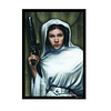 Protector Fantasy Flight STANDARD Star Wars - Princess Leia