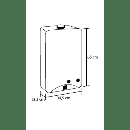 Calentador Tiro Forzado 10 Litros Gas Propano