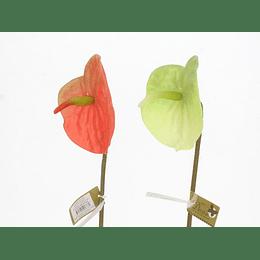 Flor Artificial Anturio de 65 cm Decore