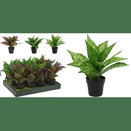 Planta C/Maceta De 28Cm.3Ass Ref: 631317
