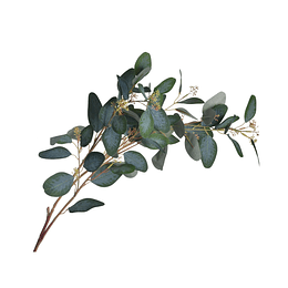 Rama Eucalipto 113 cm