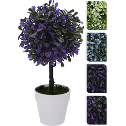 Maceta Con Planta 23 cm