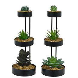 Plantas Con Soporte 3 Niveles 10.5x10Cm