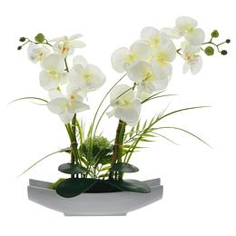 Orquídea Blanca Con Maceta En Forma De Arca