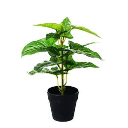 Planta Artificial Filodrendo Con Maceta Negra