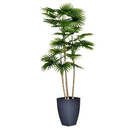 Planta Artificial Livistona Con Maceta 105Cm