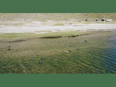Video Laguna del Maule 04