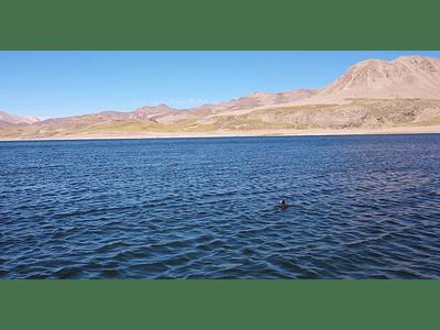 Video Laguna del Maule 01