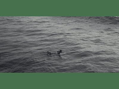 video Coquimbo - # 041