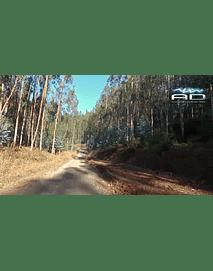 Viaje camino rural sur chile - fhd