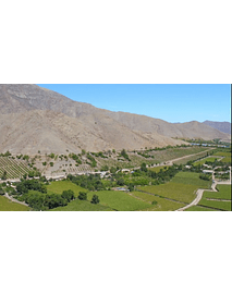 video fields of elqui valley 04