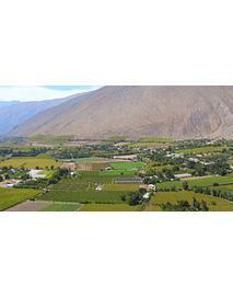 video fields of elqui valley 03
