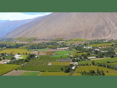video campos del valle del elqui 03