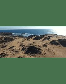Beach The Virgin # 003