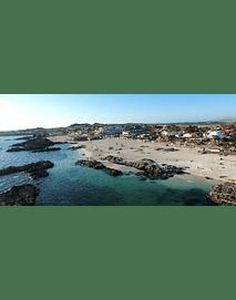 Bahia English video # 002