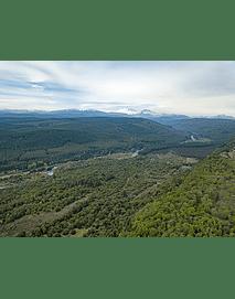 Octava región bosques y naturaleza1