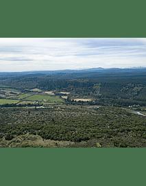 Fotos Octava región bosques y naturaleza4