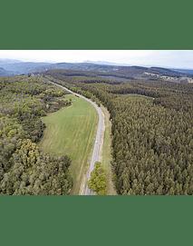 Foto Octava región bosques y naturaleza8