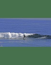 Foto Surfeando la ola 01