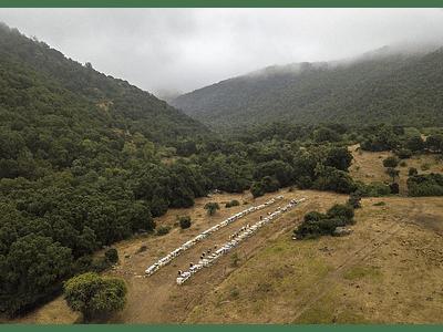 Foto aerea naturaleza Chile central apiario DJI_0004