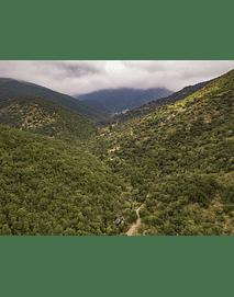 Foto aerea naturaleza Chile central DJI_0060