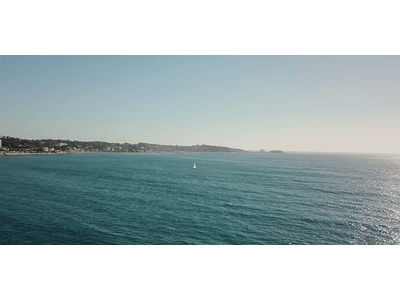 Video Algarrobo # 11