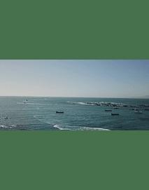 Video Algarrobo #27