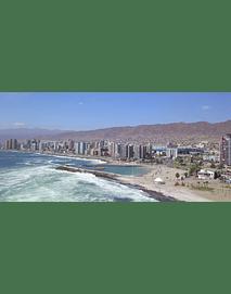Costa_Antofagasta #18