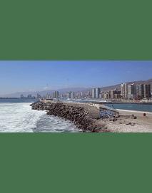 Costa_Antofagasta #20