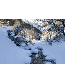 foto Aysen-Blamaceda invierno #02