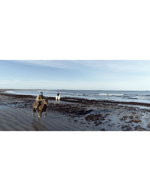 Video Isla Mocha - Gallop on the beach # 01