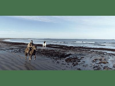 Video Isla Mocha - Galope en playa #01
