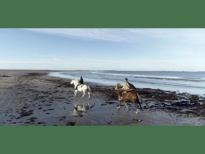 Video Isla Mocha - Galope en playa #02