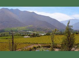 video fields del valle del elqui 00