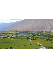 video fields of elqui valley 01