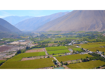 video fields of elqui valley 05