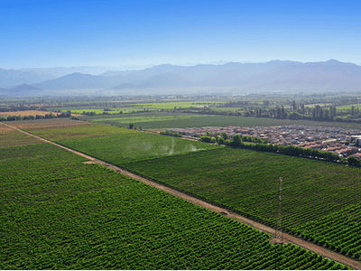 Rancagua fields photo # 03