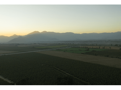 Foto Rancagua - agricultura 0045