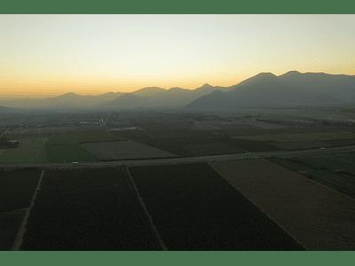 Foto Rancagua - agricultura 0072