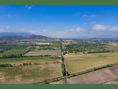 foto Agricultura Santa Amalia 00002