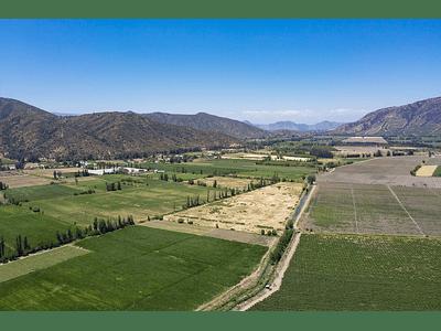 foto Agricultura Santa Amalia 00004