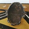 Bronze Ife Mask