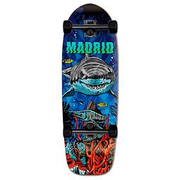 """Shark 29.25"""""""