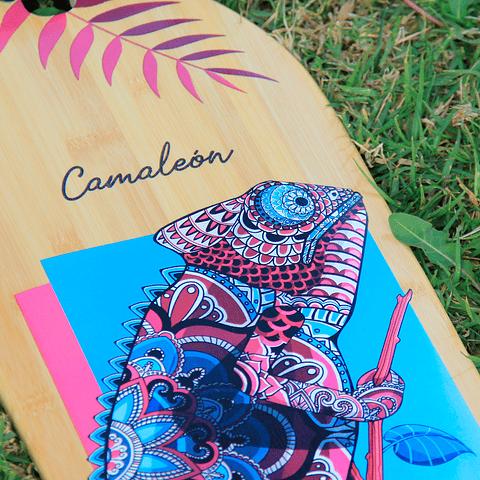 "Camaleón 41"""