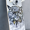 "Golden Owl 31"""