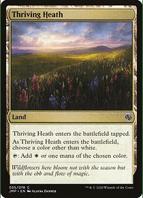 Thriving Heath - JMP - C
