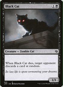 Black Cat - JMP - C