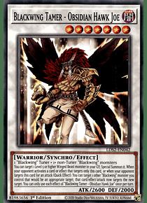 Blackwing Tamer - Obsidian Hawk Joe - LDS2-EN042 - Common