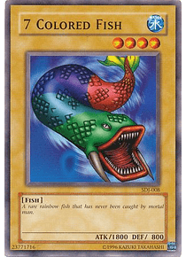 7 Colored Fish - SDJ-008 - Common