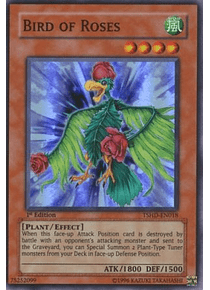 Bird of Roses - TSHD-EN018 - Super Rare